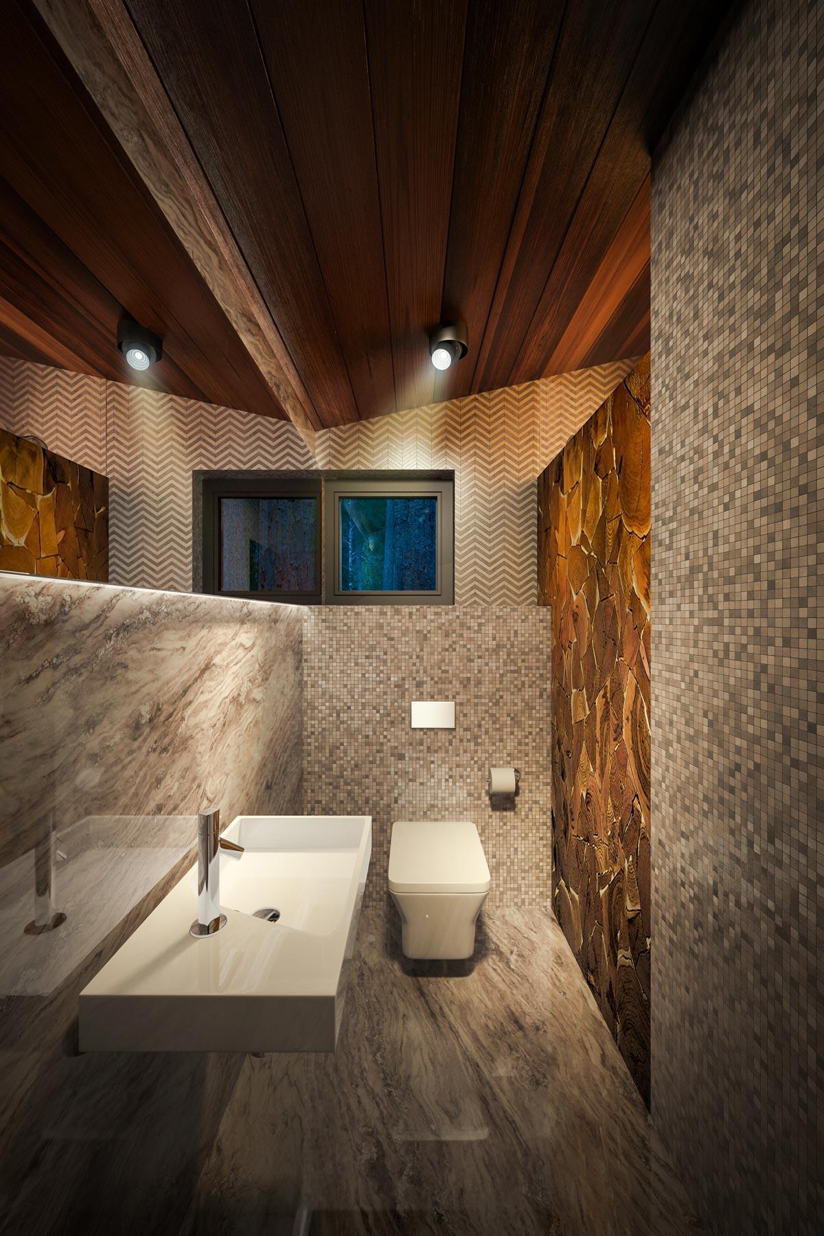 3D Визуализация Эко-Дома в Жуковке - Spa (wc)